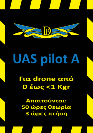 The drone project pilot academy